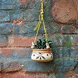 myBageecha - Hanging Clay Pot Terracotta Colorful Balcony