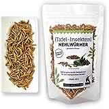 Mehlwürmer 40g - essbare Insekten von 'SNACK insects' - Insekten zum Essen