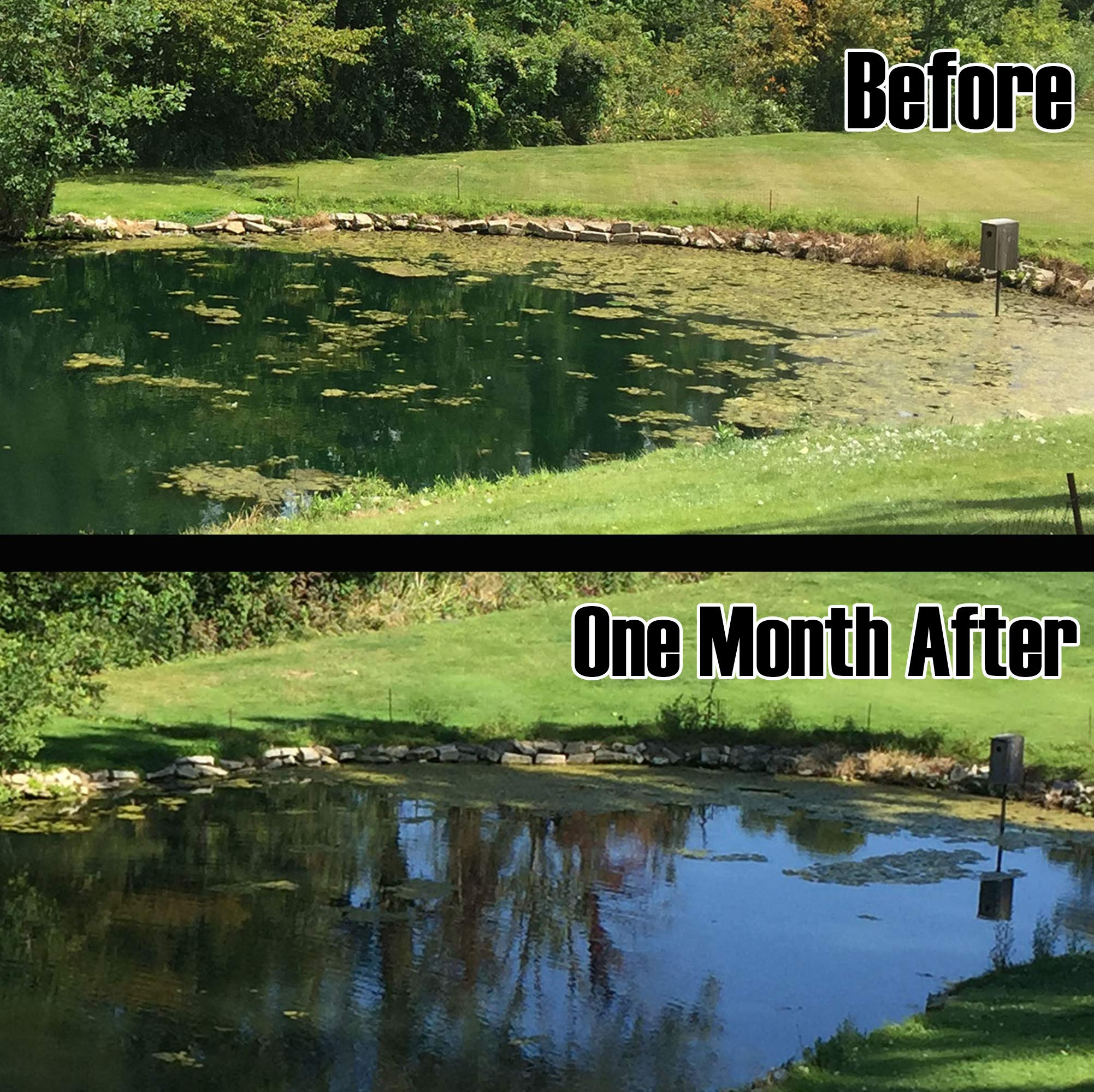Rootscape Large Pond Aerator Bubbler - Sinking Air Diffuser Filtration Algae Control by Rootscape (Image #6)