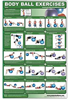 graphic regarding Printable Exercise Ball Workouts known as Laminated Conditioning Ball Poster - Higher Decrease Overall body Workouts