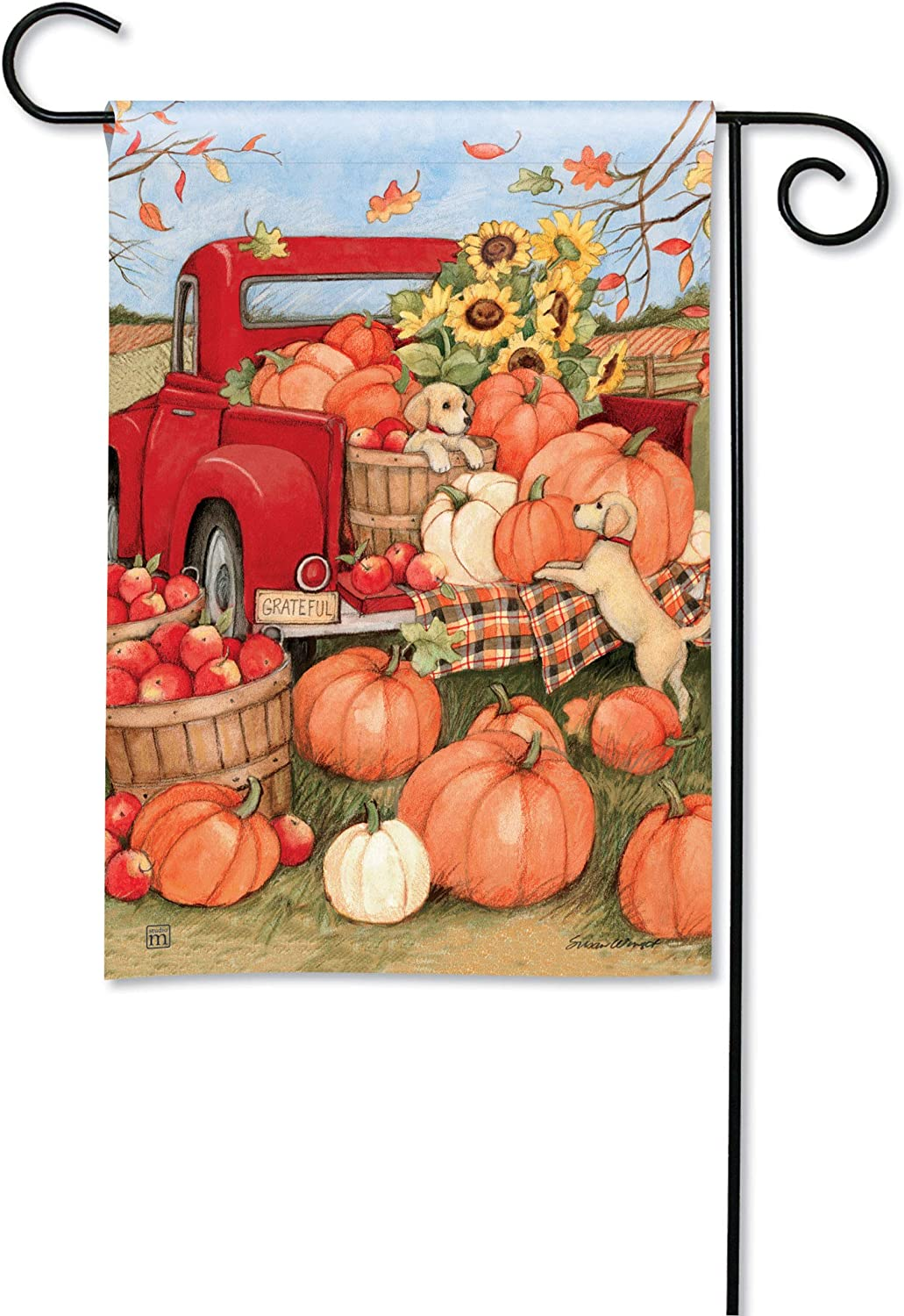 BreezeArt Studio M Pumpkin Delivery Fall Harvest Garden Flag - Premium Quality, 12.5 x 18 Inches