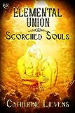 Elemental Union (Scorched Souls)