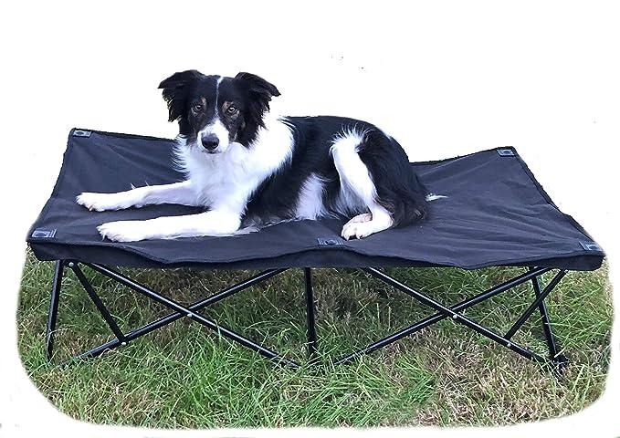 Glenndarcy - Cama Acolchada para Perro, elevada, portátil, Plegable, Ideal para Acampada y Entrenamiento: Amazon.es: Productos para mascotas