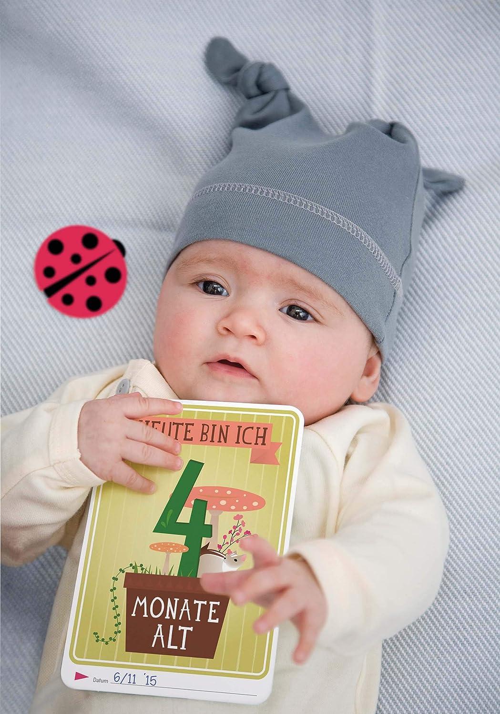 901a781df589fa Milestone(TM) Baby Cards für die einzigartigen Momente im 1. Lebensjahr   Amazon.de  Baby