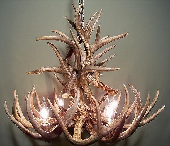 Amazon real whitetail deer antler chandelier 4 lights shed real whitetail deer antler chandelier 4 lights shed antler art elk covered sockets aloadofball Images