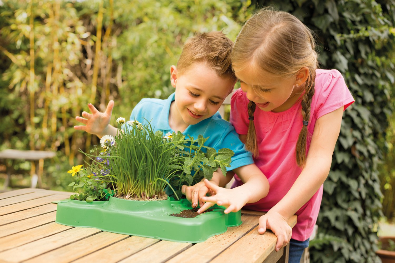 Kids First Botany - Experimental Greenhouse Kit by Kids First (Image #8)