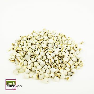 herbcare. Co Premium Dried trabajo de lágrimas/Jobi/coix ...