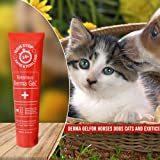 Veterinus | Derma GeL Tube | Animals Pets Dogs Cats | Wounds Cuts Treatment Care Healing Spot Skin Itchy Infection Intensive Protection First Aid Kit | 100Milliliter 3.4Ounce plus 10Milliliter Sample