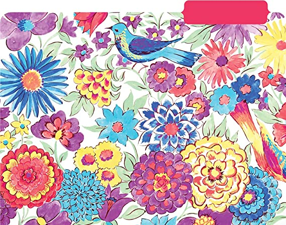 99720 Summit Studios Lily /& Val File Folders Set  11.5 x 9.5 inches Set of 6 standard size file folders