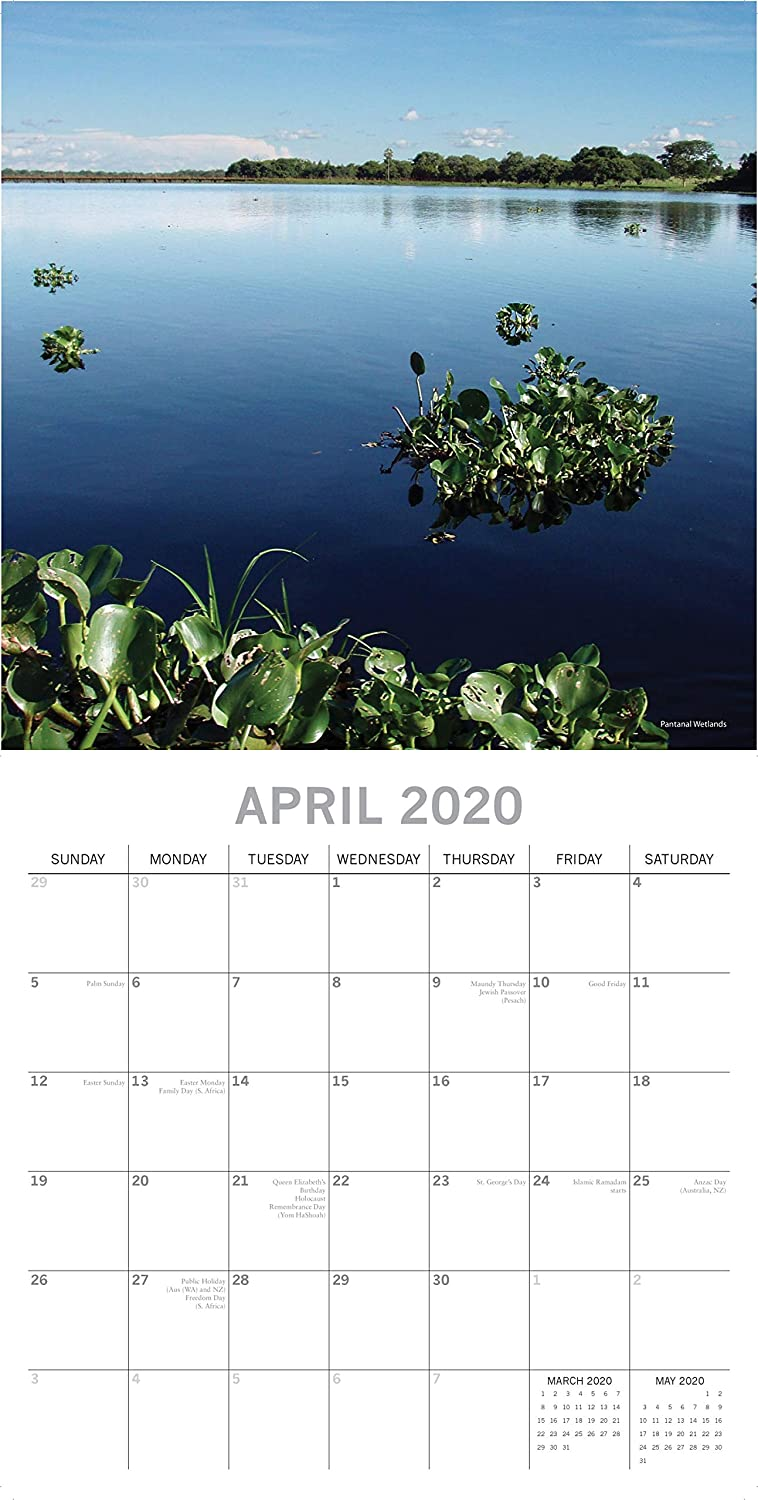 Brazil Calendar 16-Month 12 x 12 Inch Monthly View 2020 Wall Calendar Includes 180 Reminder Stickers