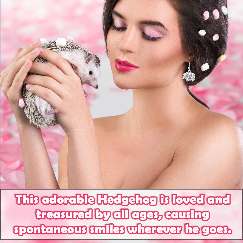 Lola Bella Gifts Crystal Hedgehog Earrings with Gift Box