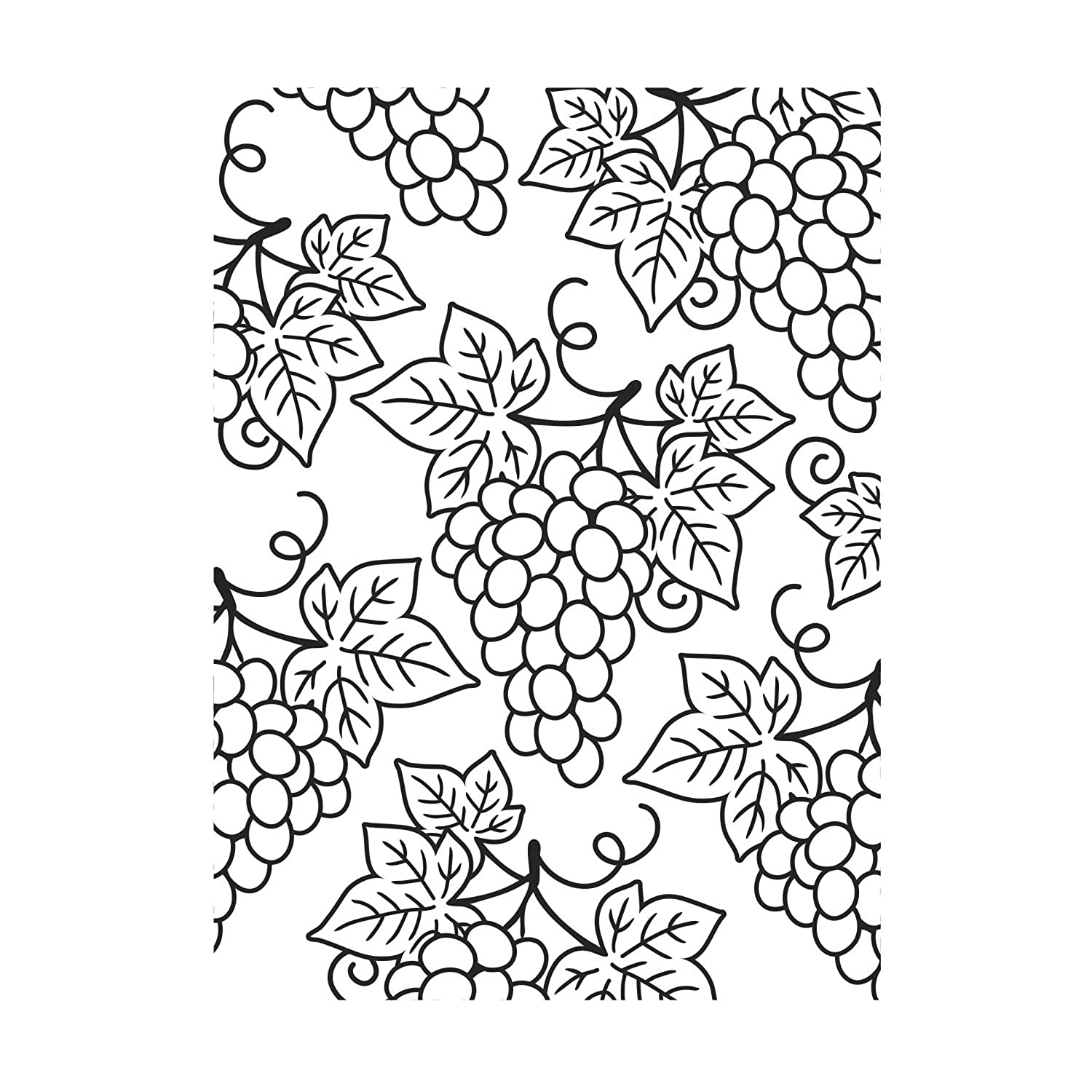 Darice Grapes Background Embossing Folder, Clear/White, 4.25 x 5.75-Inch 30008383