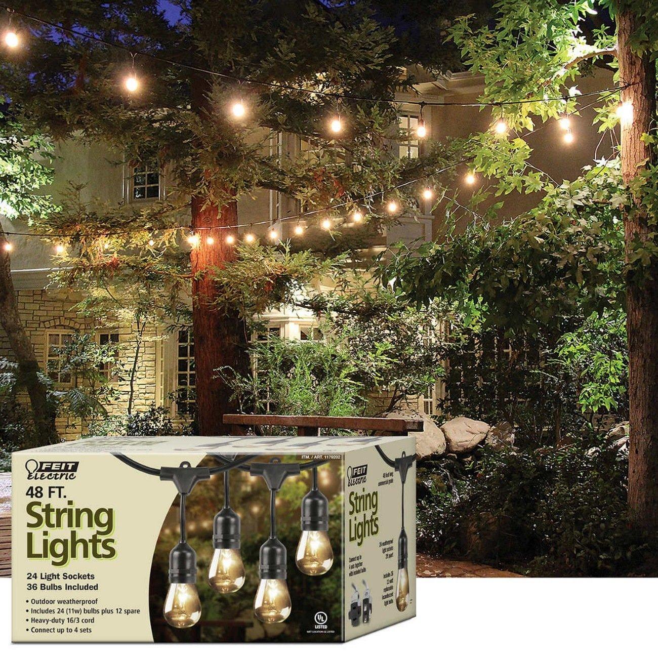 Amazoncom Feit 1179202 String Outdoor