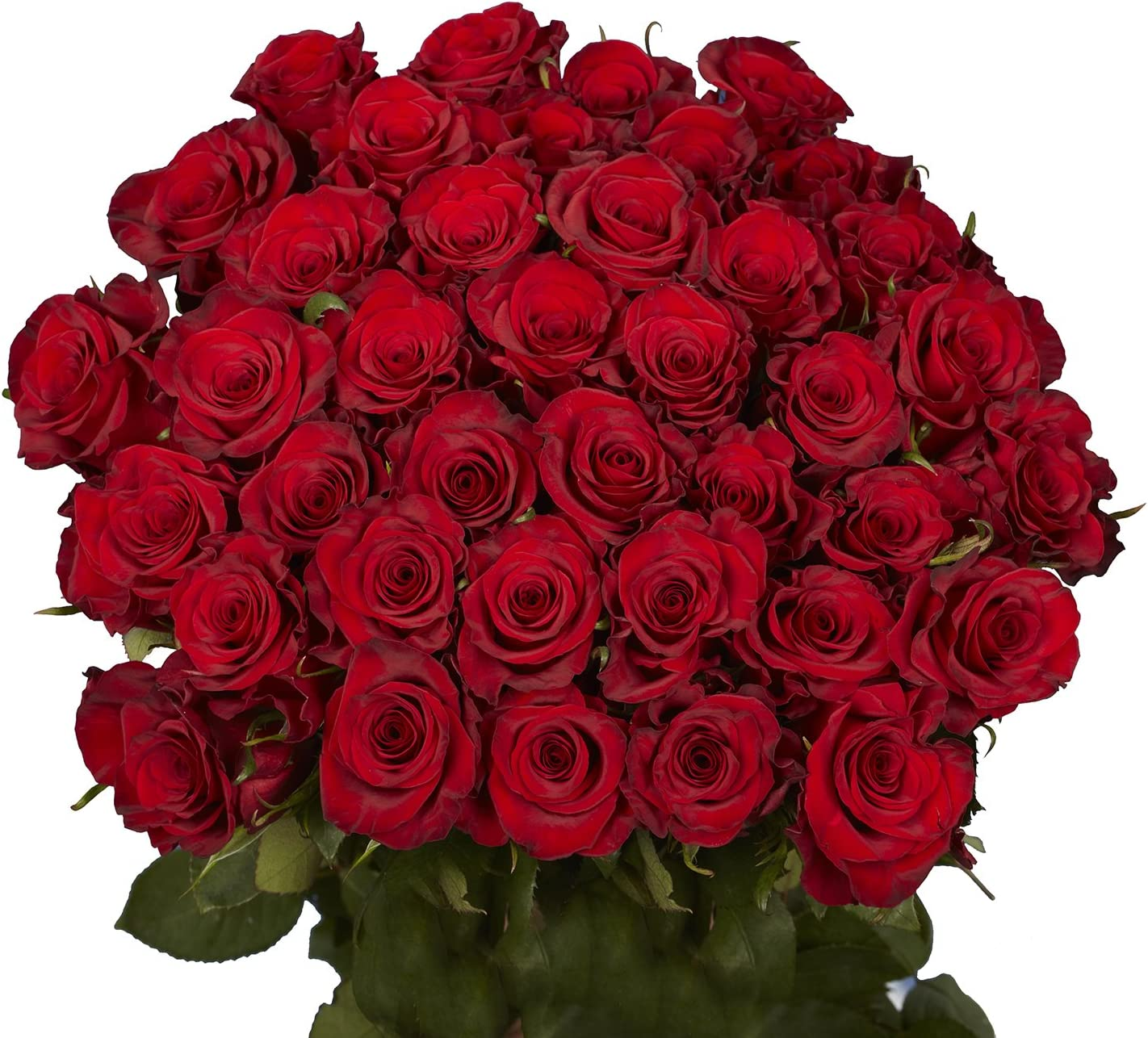 B00B2PN1E4 GlobalRose 50 Red Roses - Fresh Flowers- Delivery By Thursday April 23 81oU3AvHlDL