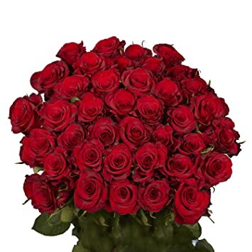 Globalrose 50 Red Roses Beautiful Fresh Cut Flowers Lovely Natural Blooms