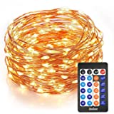 Homestarry Outdoor String Lights,Dimmable LED Starry String lights Perfect for Bedroom,Garden,Party,Indoor and Outdoor Decorations (100LEDs 33ft,Cooper Wire,WarmWhite ,Remote Control)