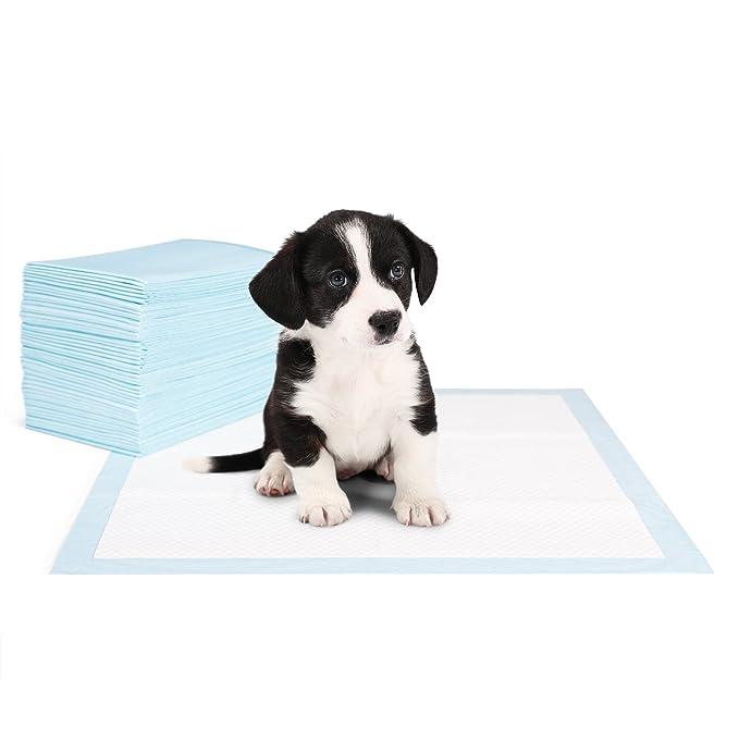 Everanimals 100 Unidades - Empapadores Para Adiestramiento De Perros   Educar A Tu Cachorro Será Más Fácil Y Rápido   Con Feromonas Atrayentes   60 x 60 Cm ...