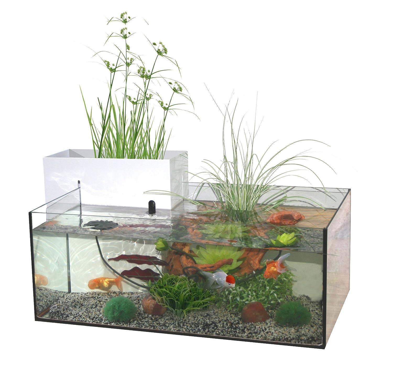 Marina Kit Mini Bassin d Innen für Aquarien