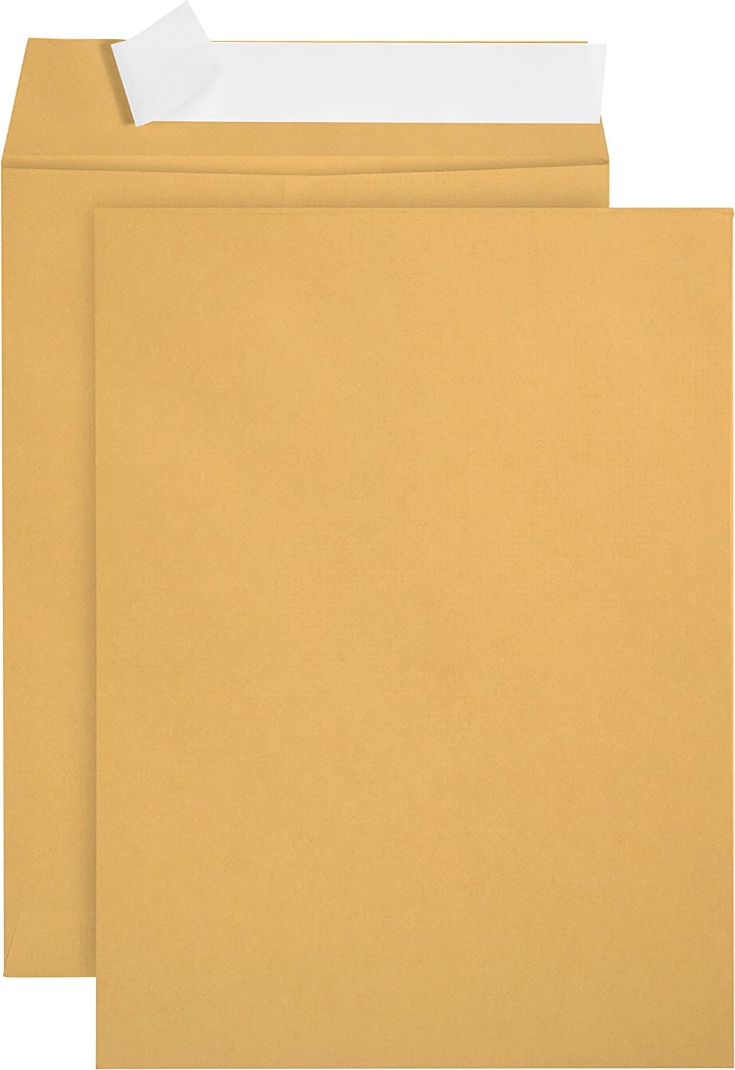 100 6 x 9 Self Seal Golden Brown Kraft Catalog Envelopes - Oversize 6 x 9 Envelope Peel and Seal Flap with 28 Pound Kraft Paper Envelopes - Printer Friendly Design - 100 Count : Office Products