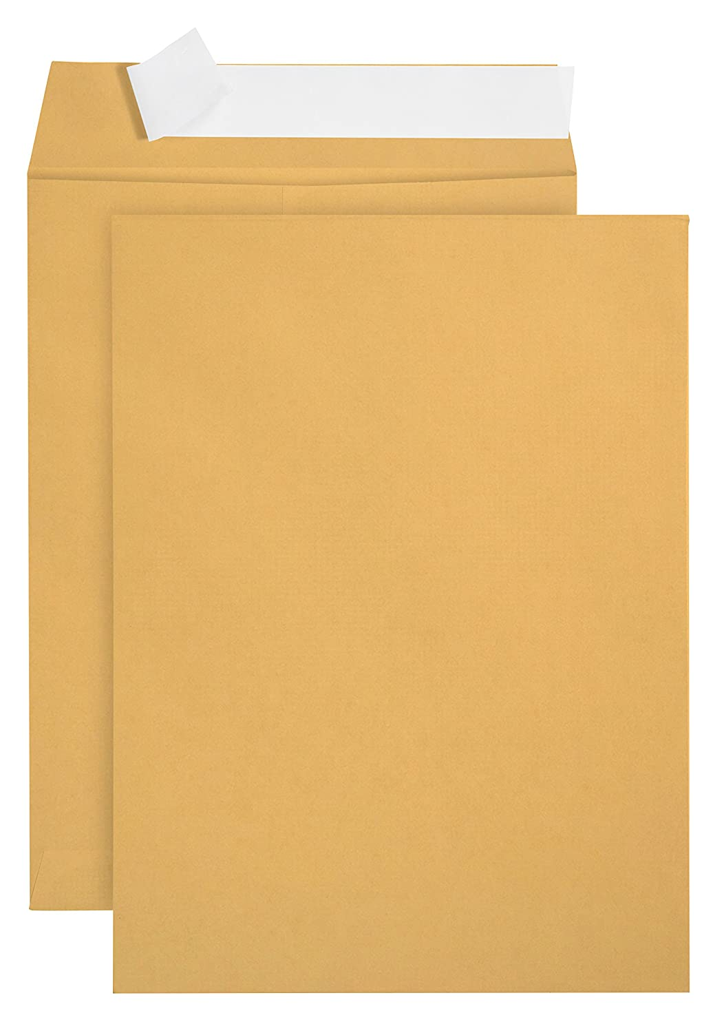 100 6 x 9 SELF Seal Golden Brown Kraft Catalog Envelopes - Oversize 6x9 Envelope Peel and Seal Flap with 28 LB Kraft Paper Envelopes- Printer Friendly Design-100 Count Blue Summit Supplies