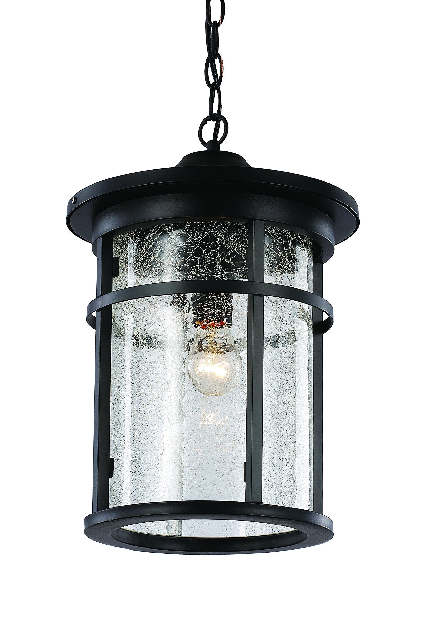 Trans Globe Lighting 40386 BK Outdoor Avalon 16'' Hanging Lantern, Black