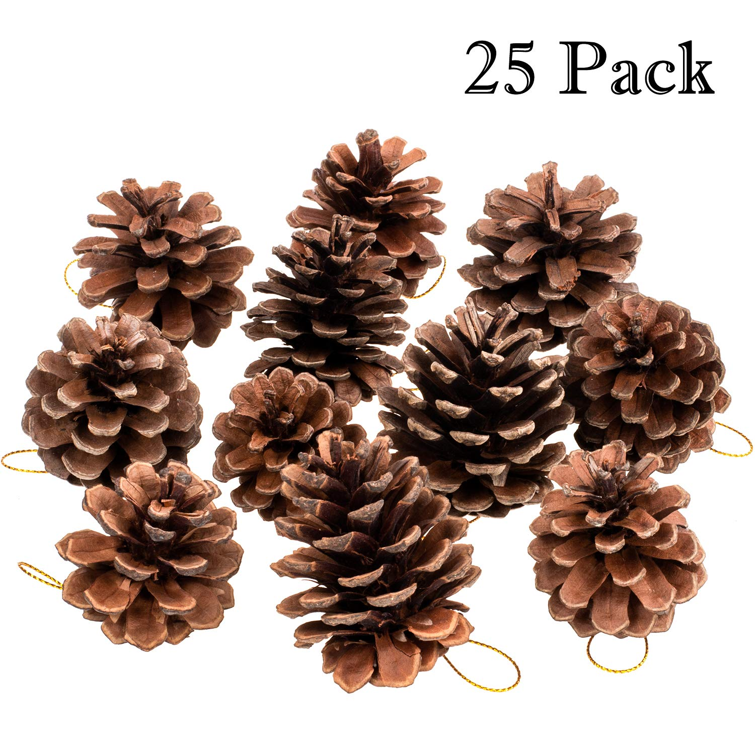 Whaline Natural Pine Cones, 25 Pieces Rustic Pinecones Bulk Ornaments with String for Gift Tag Party Hanging Fall Thanksgiving and Christmas Tree Decoration (1.6-2.4 Inches)
