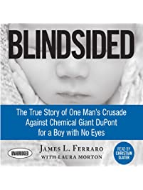 Amazon lawyers judges books blindsided the true story of fandeluxe Images