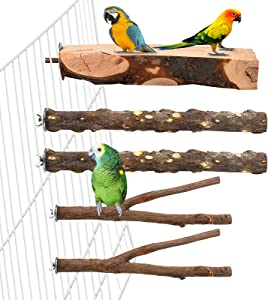 Aodaer 5 Pcs Wood Bird Perch Natural Wooden Parrot Perch Stand Platform Exercise Climbing Paw Grinding Toy Playground Accessories for Parakeet, Conure, Cockatiel, Budgie, Lovebirds