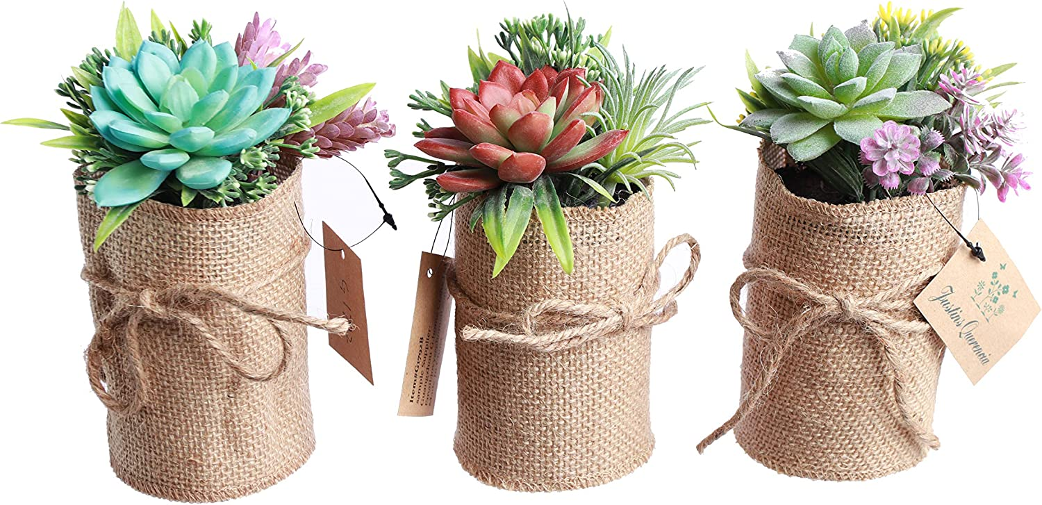 Indoor Flower Pots – Fake Succulent Plants for Bathroom & Office Décor – 3-Piece Set of Herb Garden Artificial Flowers – Lovely Gift Set Wrapping - No Tending & Practical for All Rooms – Eco-Friendly