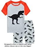Amazon Price History for:Little Pajamas Boys Pajamas 100% Cotton Lion Short Kids Snug Fit Pjs Summer Toddler Sleepwear