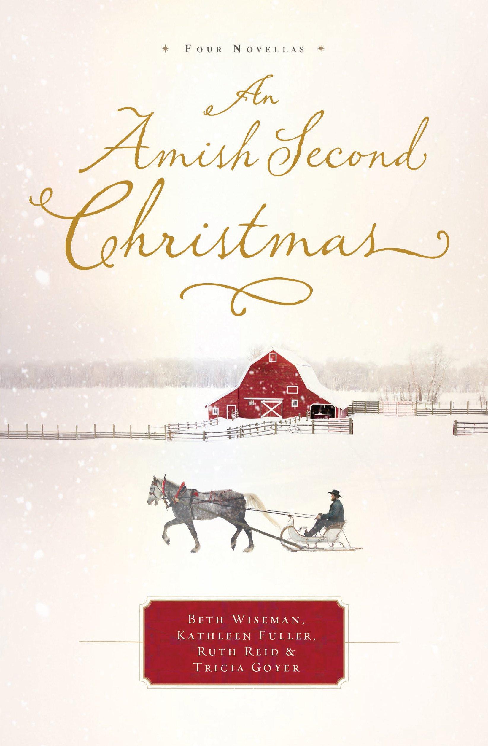 An Amish Second Christmas (Thorndike Press Large Print Christian Fiction)