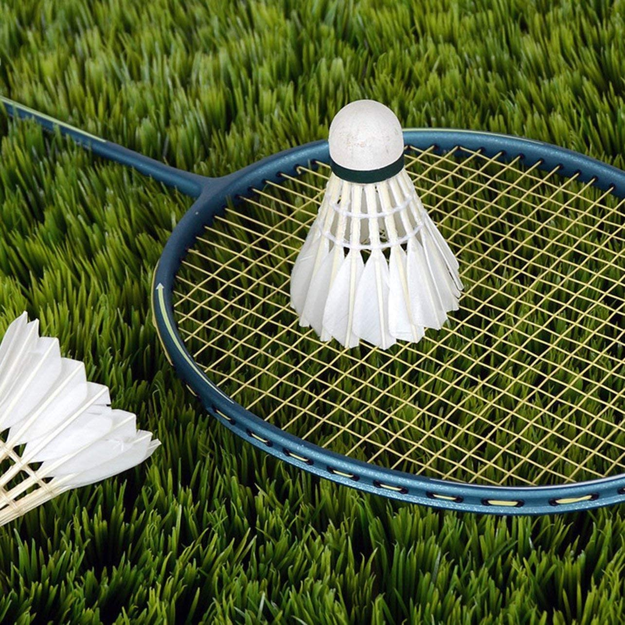 WOSOSYEYO 3 x Entra/înement Plumes de Canard Blanches Volants de Badminton Birdies Ball Game Jeu de Divertissement Sportif Balles de Badminton avec bidon