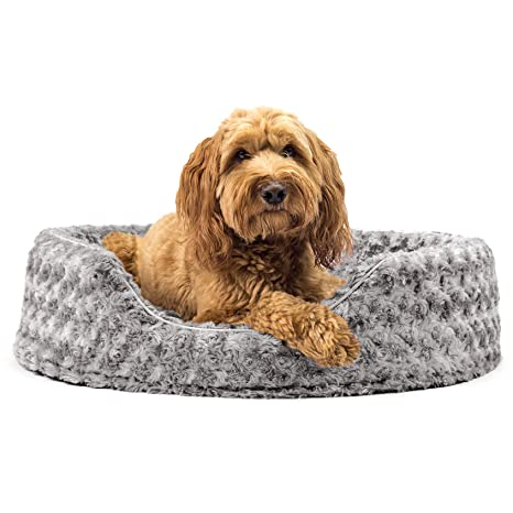 Amazon.com: Cama ovalada para perro o gato Furhaven, L, Gris ...