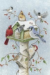 Toland Home Garden Winter Birds 12.5 x 18 Inch Decorative Snow Bird Cardinal Jay Birdhouse Garden Flag - 1110097