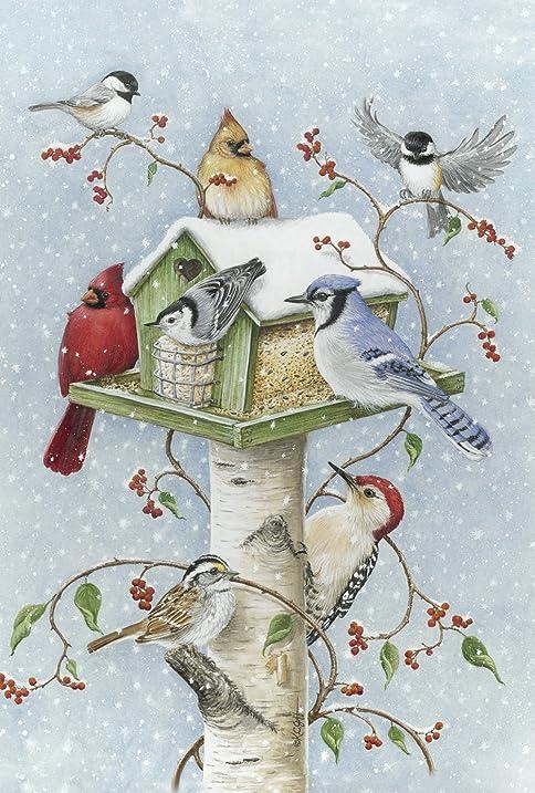 Amazon Com Toland Home Garden Winter Birds 12 5 X 18 Inch