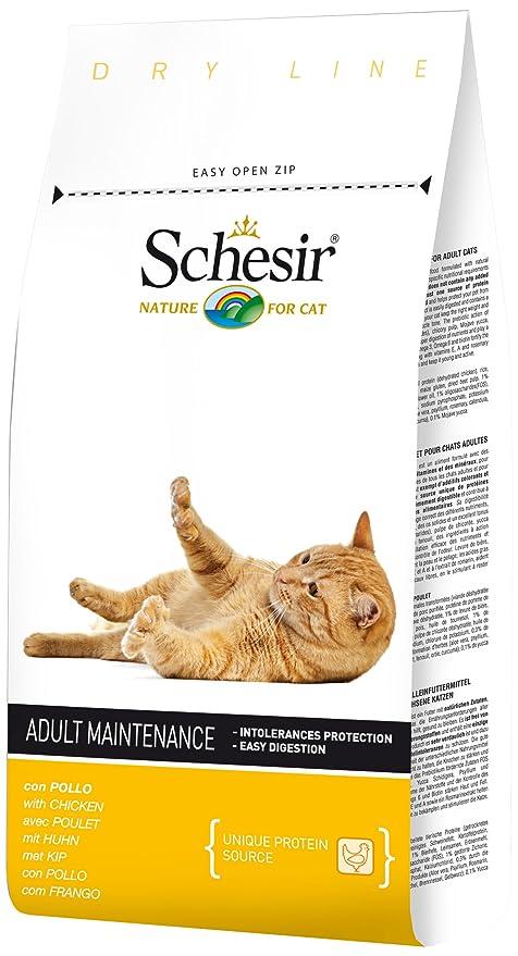Schesir pienso gato 1.5 kg mantenimiento pollo