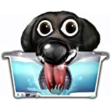 Slopper Stopper Dripless Water Bowl for Dogs and Cats