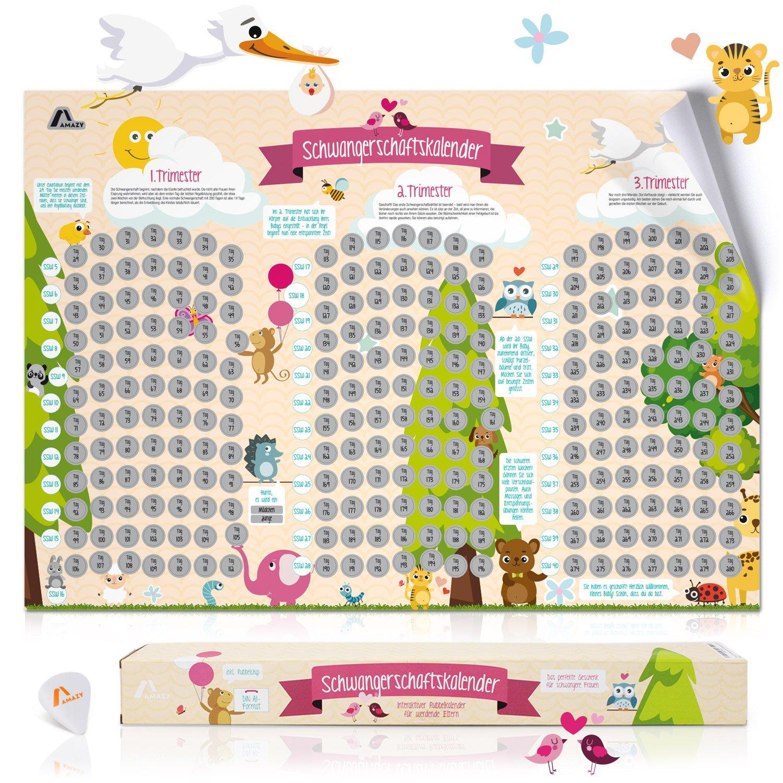 Amazy Schwangerschaftskalender zum Freirubbeln inkl. Geschenkbox + Rubbelchip – Rubbel-Kalender mit spannenden Infos als Geschenk für Schwangere & werdende Eltern – von der 5. SSW bis zur Geburt