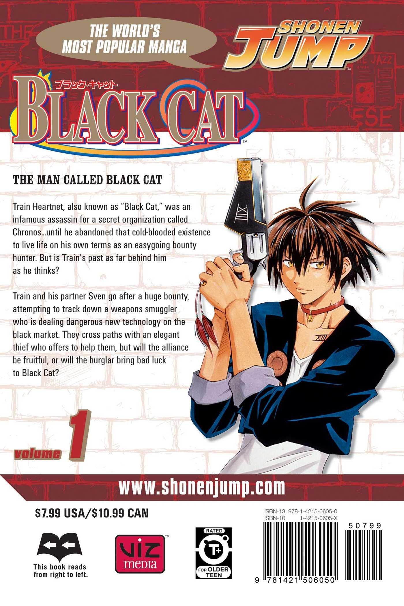 Black Cat Manga - Volume 9 download