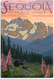 product image for Lantern Press Sequoia National Park, California, Spring Flowers (12x18 Aluminum Wall Sign, Wall Decor Ready to Hang)