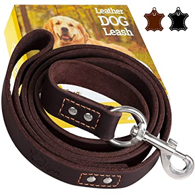ADITYNA Heavy Duty Leather Dog Leash 6 Foot