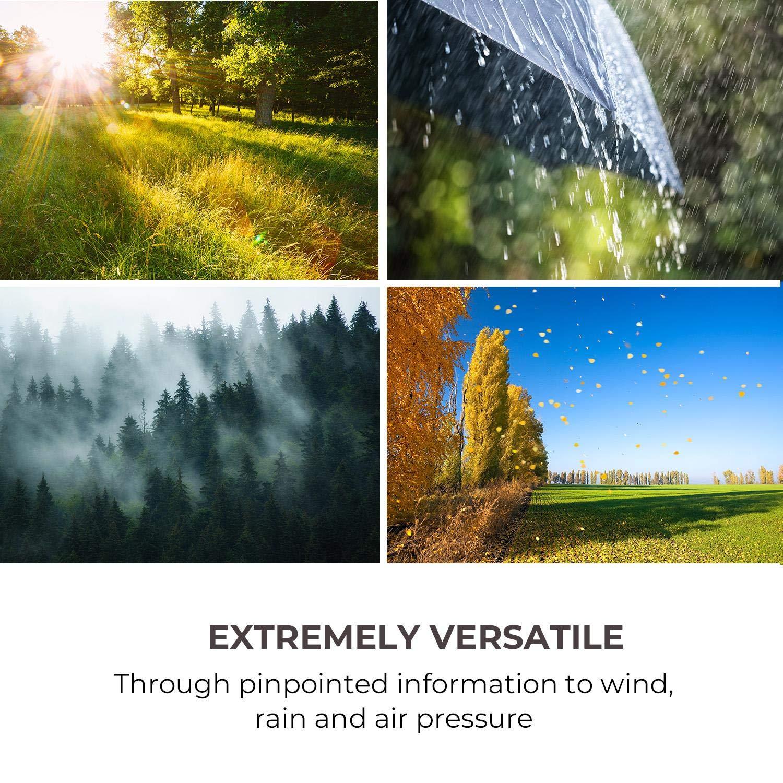 radiaci/ón UV y luz /• De -40 a 60 /°C /• Interior y exterior /&b presi/ón atmosf/érica viento Waldbeck Halley /• Estaci/ón metereol/ógica profesional /• Medidas 6 en 1: temperatura precipitaci/ón