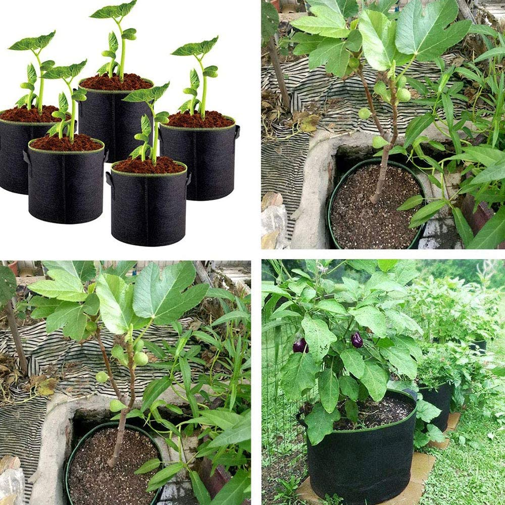 Fruit X-Kang Heavy Duty Aeration Fabric Pots Container with Handles for Nursery Garden Home Vegetable Tree 6-Pack 5 Gallon Grow Bags