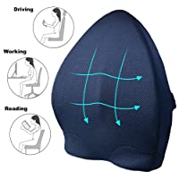 Memory Foam Lumbar Support Back Cushion,Ergonomic 3D Ventilative Mesh Lumbar Support Pillow,Orthopedic Design for Lower Back Pain Relief,Adjustable Straps For Car,Recliner or Office Chair