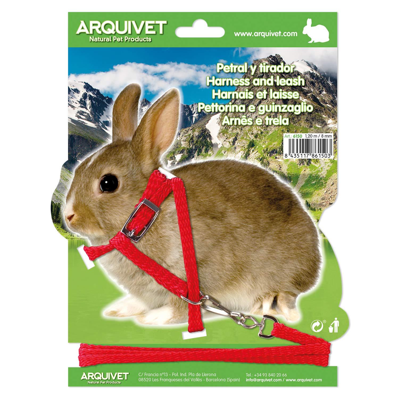 Arquivet 8435117861503 - Petral para roedores: Amazon.es ...