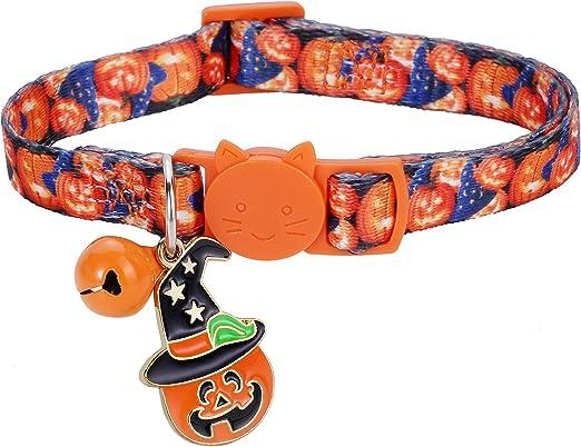 Cozy Critter Crazy Pumpkins Halloween Dog Collar
