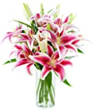 KaBloom Charming Bouquet of 8 Fresh Pink Lilies with Vase