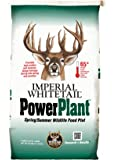 Whitetail Institute Imperial Power Plant Food Plot Seed (Spring Planting)