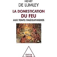 DOMESTICATION DU FEU AUX TEMPS PALÉOLITHIQUES