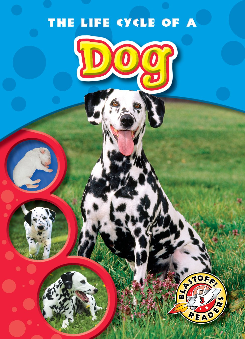 Life Cycle of a Dog, The (Blastoff! Readers: Life Cycles) (Life Cycles: Blastoff Readers, Level 3) pdf epub